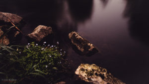 Steine in der Schmutter