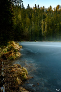 Wild See | Schwarzwald | Landschaft | Fujifilm | X-T1 | 18-55mm