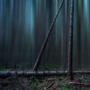 Black Forest - color | Landscape | Fujifilm | X-T1 | 12mm Walimex