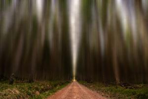 Black Forest - road | Landscape | Fujifilm | X-T1 | 12mm Walimex