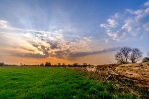 Sonnenaufgang - Mit Stamm | Fujifilm | X-T1 | 12mm